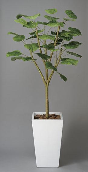 【送料無料・ポイント10倍】《アートグリーン》《人工観葉植物》光触媒 光の楽園 ウンベラータW1.8