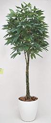 【送料無料・ポイント10倍】《アートグリーン》《人工観葉植物》光触媒 光の楽園 パキラ 2.0