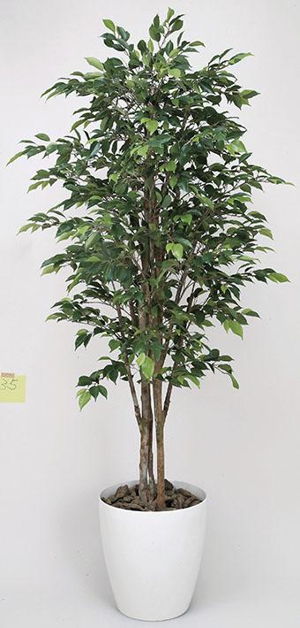 【送料無料・ポイント10倍】《アートグリーン》《人工観葉植物》光触媒 光の楽園 ロイヤルベンジャミン 1.6