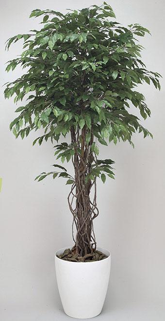 【送料無料・ポイント10倍】《アートグリーン》《人工観葉植物》光触媒 光の楽園 ベンジャミンリアナ 1.8