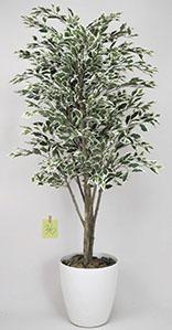 【送料無料・ポイント10倍】《アートグリーン》《人工観葉植物》光触媒 光の楽園 ベンジャミンツリー斑入り 1.8