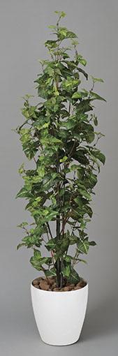 【送料無料・ポイント10倍】《アートグリーン》《人工観葉植物》光触媒 光の楽園 シンゴニューム1.7