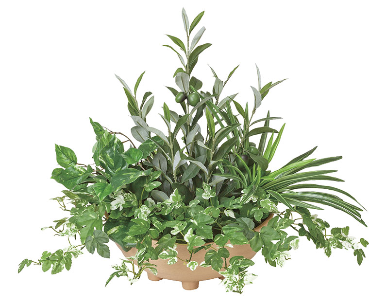 【送料無料・ポイント10倍】《アートグリーン》《人工観葉植物》光触媒 光の楽園 光の楽園 寄せ植えオリーブ