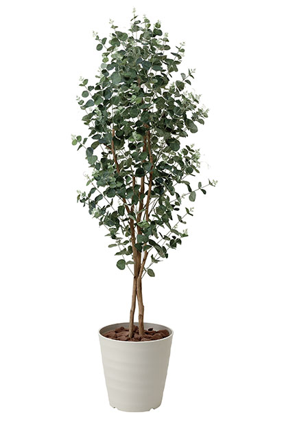 【送料無料・ポイント10倍】《アートグリーン》《人工観葉植物》光触媒 光の楽園 ユーカリ1.55