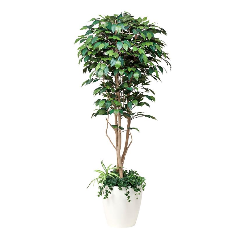 【送料無料・ポイント10倍】《アートグリーン》《人工観葉植物》光触媒 光の楽園 光の楽園 フィカスベンジャミン1.8植栽付