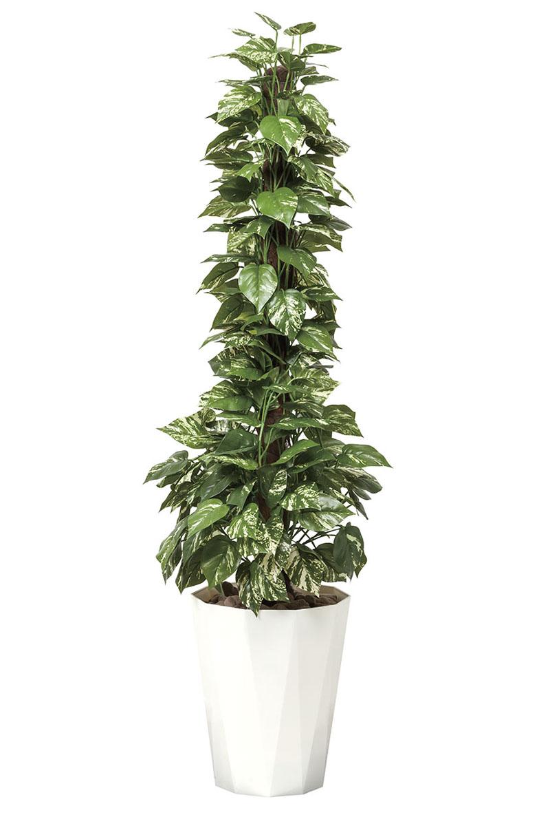 【送料無料・ポイント10倍】《アートグリーン》《人工観葉植物》光触媒 光の楽園 光の楽園 ポトス1.5