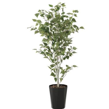 【送料無料・ポイント10倍】《アートグリーン》《人工観葉植物》光触媒 光の楽園 白樺1.4