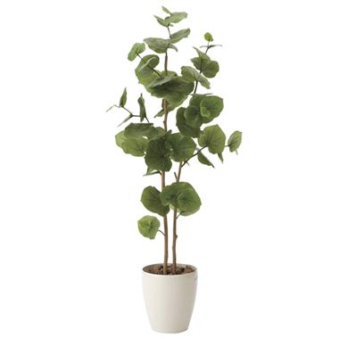 【送料無料・ポイント10倍】《アートグリーン》《人工観葉植物》光触媒 光の楽園 シ―グレ―プ1.25