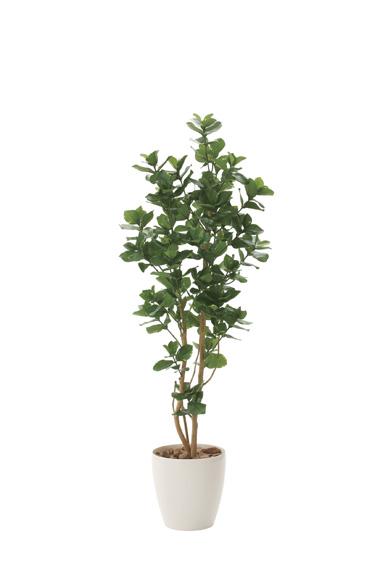 【送料無料・ポイント10倍】《アートグリーン》《人工観葉植物》光触媒 光の楽園 クルシア1.6