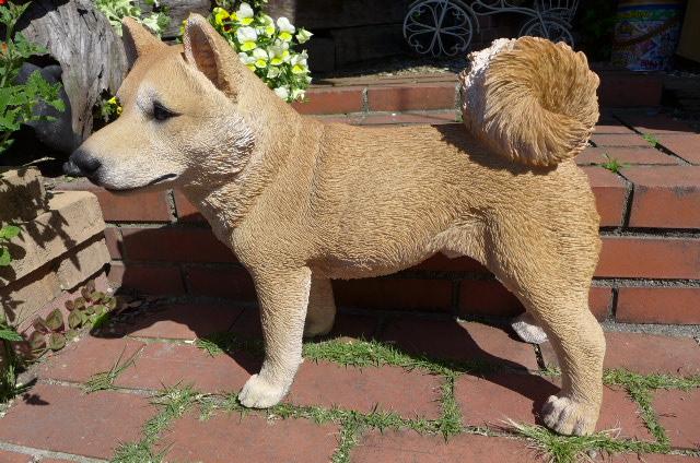 犬の置物 大型柴犬 22QY いぬ イヌ 動物 オーナメント ガーデン インテリア 雑貨 置物 庭 ガーデンマスコット オブジェ ガーデニング リアル ディスプレィ