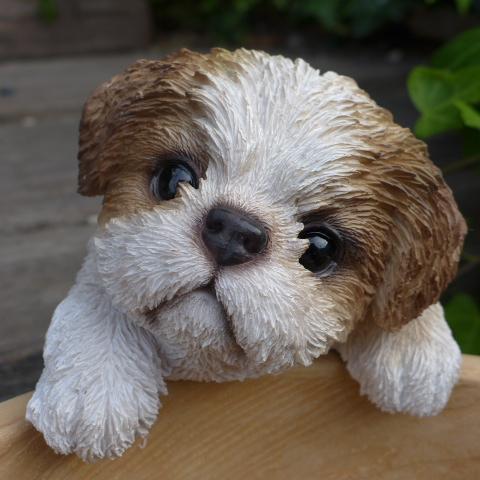 オーナメント ガーデン オブジェ 庭 ガーデニング インテリア 雑貨 マスコット リアル デスプレィ ハンギングドッグ 陶器 シーズー 犬の置物 いぬ アニマル イヌ ディスプレィ 動物 人気ブレゼント! T14202 希少