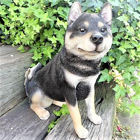 犬の置物 黒柴犬 13183 いぬ イヌ 動物 オーナメント ガーデン インテリア 雑貨 置物 庭 ガーデンマスコット 雑貨小物 ディスプレィ 陶器 リアル