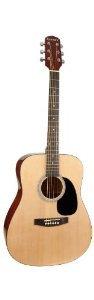 Giannini Guitars GSFX-41 NAT ローズウッドフィンガーボード アコースティックギター アコースティック