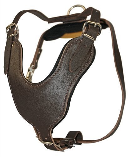 Dean and Tyler Leather Basic Nickel Hardware Dog Harness with Handle Brown Medium - Fits Girth Siz