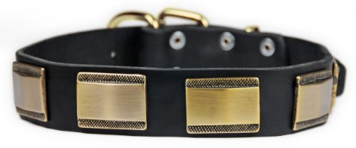 Dean & Tyler Brass Style Dog Collar with Beautiful Plates and Brass Buckle 24 by 1-1/2-Inch Black