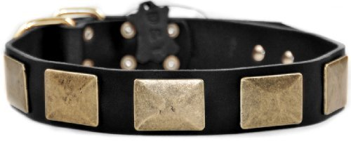 Dean & Tyler Brass Plate Dog Collar with Vintage-Style Plates and Brass Buckle 28 by 1-1/2-Inch Bl