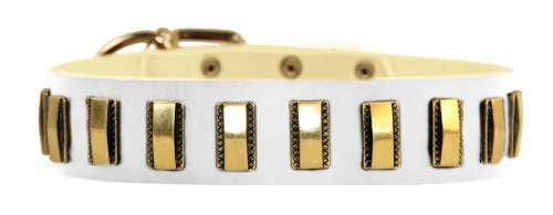 Dean & Tyler Brass Line Leather Dog Collar with Solid Brass Plates 20 by 1-1/2-Inch Fits 18 to 22-