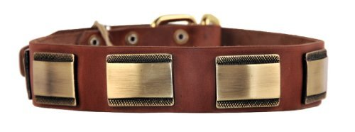 Dean & Tyler Brass Style Dog Collar with Beautiful Plates and Brass Buckle 26 by 1-1/2-Inch Brown