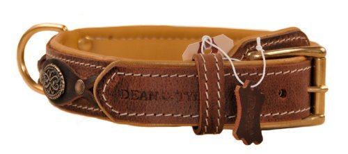 Dean and Tyler DEAN'S LEGEND Dog Collar with Brown Padding and Brass Hardware Brown Size 26-Inch b