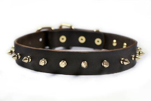 Dean & Tyler Spiked Punch Dog Collar with Solid Brass Spikes and Buckle 32 by 1-1/4-Inch Brown