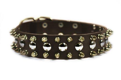 格安販売の Dean & Tyler with Golden Spike Dog Dean 36 Collar with Spikes/Studs/Brass Buckle 36 by 1-1/2-Inch Brown, 満濃町:39bb4bc0 --- blablagames.net