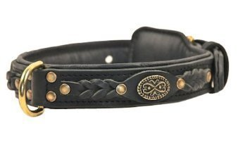 格安販売の Dean & Tyler Dean's Legend 30 Leather 1- Legend Dog Collar with Black Padding and Solid Brass Hardware 30 by 1-, ナッツ&ドライフルーツ:78f5ef7e --- canoncity.azurewebsites.net