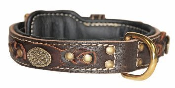 Dean & Tyler Dean's Legend Leather Dog Collar with Black Padding and Solid Brass Hardware 30 by 1-