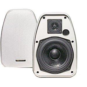 BIC ビック America Adatto DV52siW 2-Way 5.25-Inch Indoor インドア /Outdoor アウトドア Speaker スピ