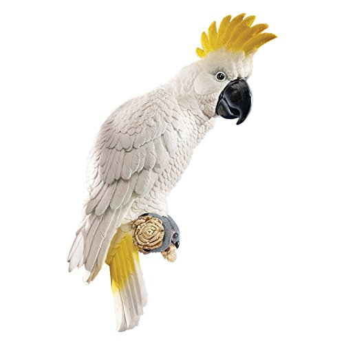 Design Toscano Citron Cockatoo Wall Sculpture by Design Toscano