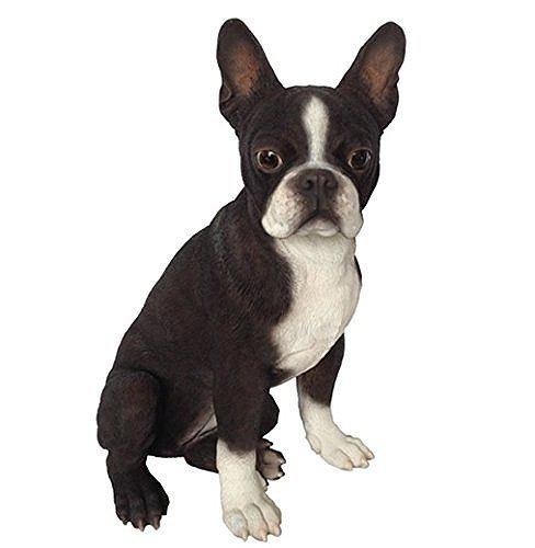ボストンテリア(Boston Terrier) 犬の置物・オブジェ