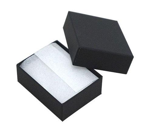 <title>アクセサリーのギフト 収納に 用途の広いフリータイプ 格安 ピアスやイヤリングにピッタリサイズ ジュエリーケースアクセサリーケース RE87 紙製 黒 フリータイプ</title>