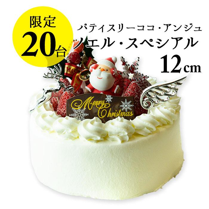 限定20個!手作りのクリスマスケーキ2019 ノエル・スペシアル(4号 直径12cm 2~4名)【ココアンジュ】【お歳暮 ギフト】