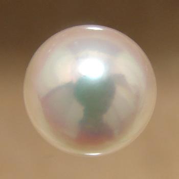 あこや本真珠 パールルース(シングル) ホワイト系 9.0-9.5mm AAB ラウンド (片穴があいています)[n4][4-1390](真珠 パール)(セミオーダー 加工用)