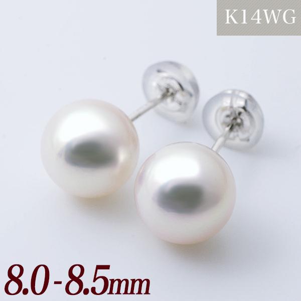 あこや本真珠 パールピアス ホワイト系 8.0-8.5mm AAB K14WG ホワイトゴールド [n3](真珠 ピアス スタッド)(冠婚葬祭 フォーマル 入学式 卒業式 成人式)