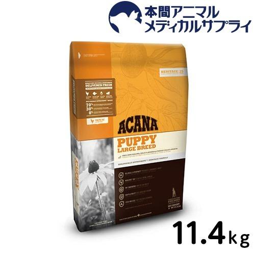 アカナ 犬用 パピー ラージブリード11.4kg