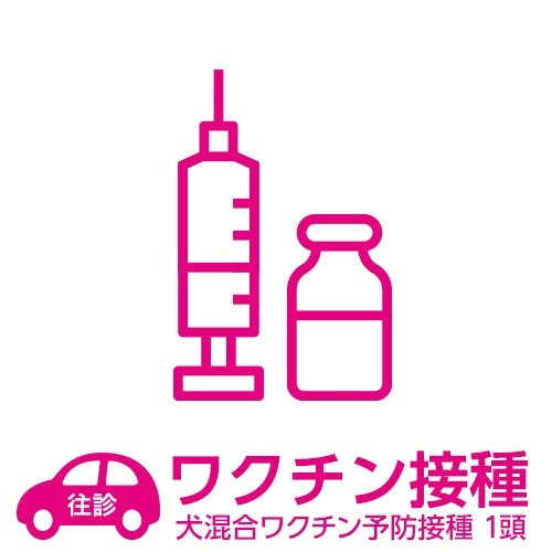 【往診サービス】自宅往診基本パック 犬 混合ワクチン予防接種 1頭