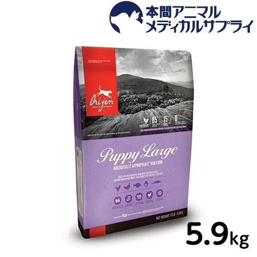 オリジン パピー ラージ 5.9kg【d_origin】