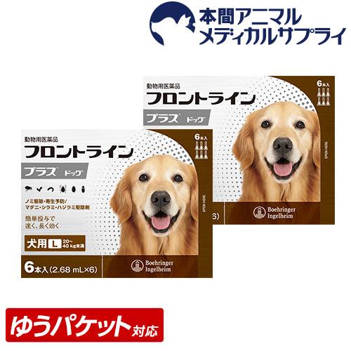 【メール便送料無料】犬用 フロントラインプラス L (20kg~40kg) 2箱 12本入 12ピペット【動物用医薬品】【1903_flp】