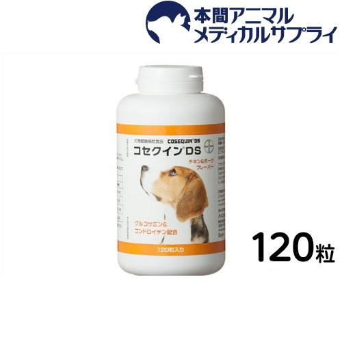 シニア犬や病中病後の栄養補給に - retriever.org