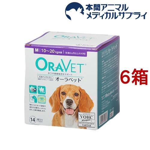 日本全薬 激安価格と即納で通信販売 オーラベット 国内送料無料 M 6箱セット 14個入