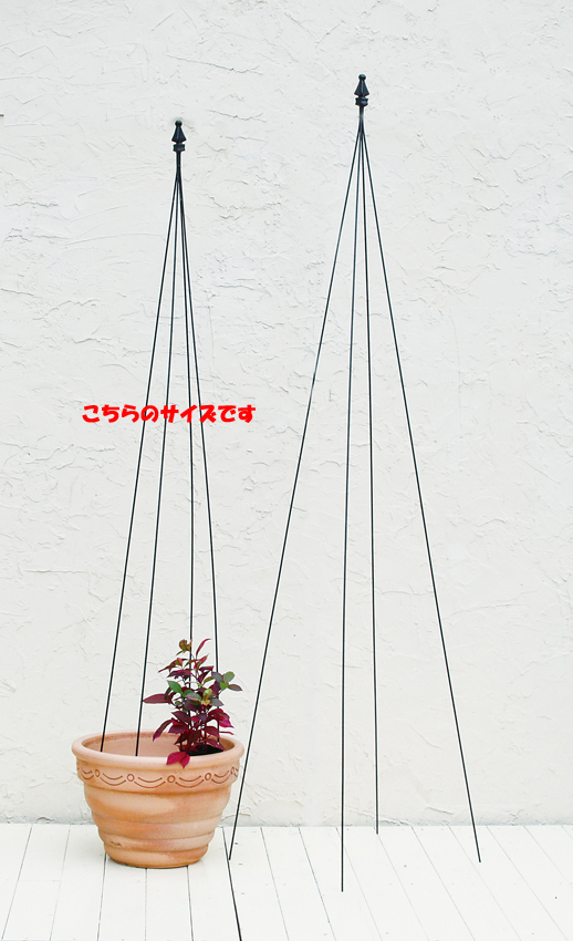 【代引/同梱不可】※花・植物・鉢は商品に含まれませんスティックトピアリー 12個セット