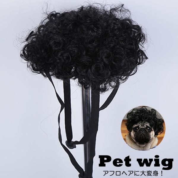 犬 犬服 かつら アフロ 変身 コスプレ ウィッグ キャップ 1年保証 男の子用 帽子変身 かぶりもの メーカー公式ショップ