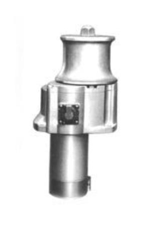 岩崎電機工業 ヤングローラー MI-A 12V 500W