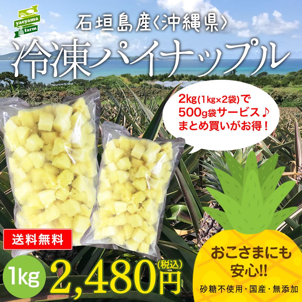 石垣島産 カットパイナップル ☆冷凍☆