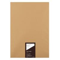 コクヨ 高級ケント紙 A2 233g 100枚 (セ-KP37)