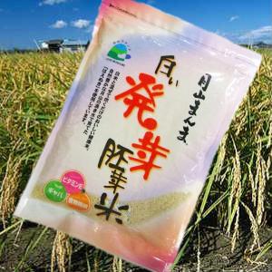 日本未発売 栄養成分の高い発芽した胚芽がついています 発芽玄米ではなく発芽胚芽米です 白い発芽胚芽米 国内正規総代理店アイテム はえぬき1kg ネコポス発送 月山まんま