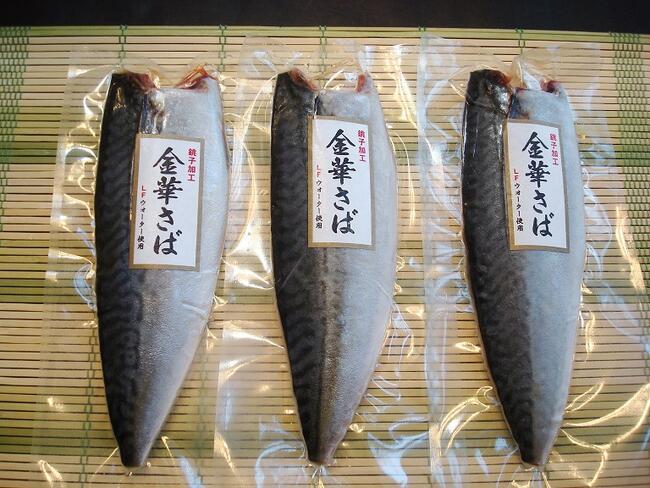 金華さばフィレ3枚 さば文化干し 保証 サバ 鯖 きんかさば オンラインショッピング