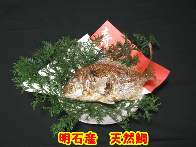 明石名産【魚秀の焼鯛】天然・明石鯛・生の時1.3kg位