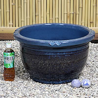 No. 15, sea cucumber color water bowls! Shin Raku suiren pots! Ideal for fish bowls, fish bowl! Water lilies pots / pottery water lily pot / Lotus pots / already pot / medaka pots / pots / pottery / water coupled pots / water bowl / water lilies pots / e