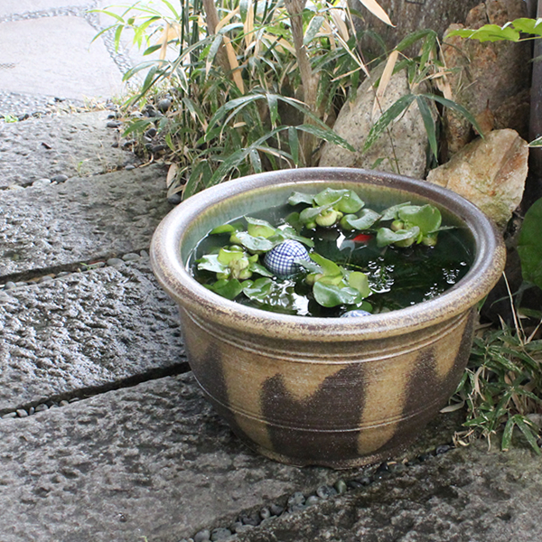 No. 13 kiln skin クシ目 water basin! Shin Raku suiren pots! Ideal for fish bowls, fish bowl! Water lilies pots / pottery water lily pot / Lotus pots / already pot / medaka pots / pots / pottery / water coupled pots / water bowl / water lilies pots / easy ba